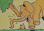 rozwścieczony słoń